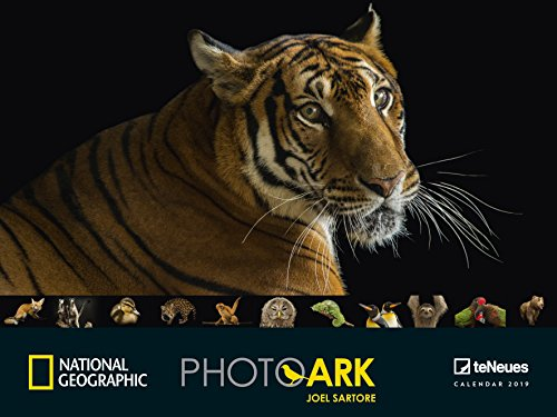 National Geographic Photo Ark 2019 - Tierkalender, Posterkalender, Wandkalender 64 x 48