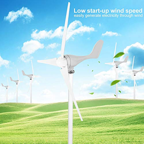 Zoternen - Kit generatore turbina eolica, 500 W, 12 V