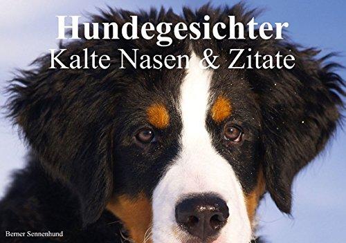 Hundegesichter • Kalte Nasen & Zitate (Tischaufsteller DIN A5 quer): Hundegesichter und schöne Zitate für alle Hundeliebhaber (Tischaufsteller, 14 ... [Dec 14, 2013] Stanzer, Elisabeth