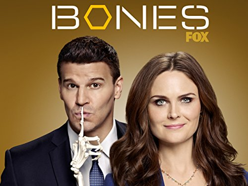 Bones - Staffel 9 [dt./OV] (Video Booth)
