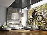 Startonight Fototapete Kunstdruck Bike springen, Wandbild Großformatige Modern Muster Dekorative Kunst Wand 256 x 366 CM