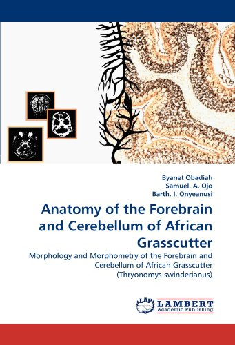 Anatomy of the Forebrain and Cerebellum of African Grasscutter por Byanet Obadiah