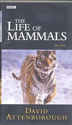 The Life Of Mammals - Part 1