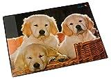 Läufer 46581 Schreibtischunterlage mit Motiv Hunde, 40x53 cm, rutschfeste Schreibunterlage mit transparenter Seitentasche