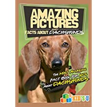 Amazing Pictures and Facts About Dachshunds : The Most Amazing Fact Book for Kids About Dachshunds  (Kid's U) (English Edition)
