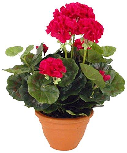 MICA Decorations 975206 Vaso di gerani Grande, Colore Rosa