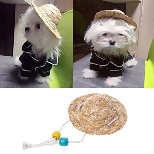 dairyshop Cat Puppy Dog Hawaii Hat Custom, PET FUNNY Stroh hat Geschenk Kostüm Zubehör (Star Stellen Kostüme Sie Wars)