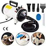 Voilamart 2800W Variable Speed Pet Grooming Hair Dryer High Velocity Dog Cat Hairdryer Blaster Fur Blower, White (1 YEAR WARRANTY)
