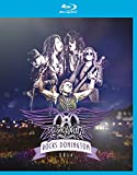 Aerosmith Rocks Donningon [Blu-ray]
