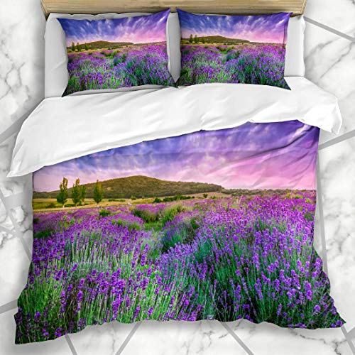 DINANY Bettwäsche - Bettwäscheset Feld lila Provence Sonnenuntergang über Sommer Lavendel Tihany Natur grün Frankreich Ungarn Ernte Mikrofaser weich dreiteilig Mit 2 Kissenbezügen 160 * 220 -