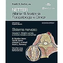 NETTER Atlante di anatomia fisiopatologia e clinica: Sistema Nervoso 2: Midollo Spinale e sistemi motorio e sensoriale (NETTER Atlante di Anatomia Fisiopatologica e Clinica)