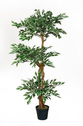 3 Kronen Ficus grün/weiß Höhe 1,30 m incl. Topf Kunstbaum Kunstpflanze