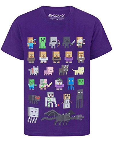 Official Minecraft Sprites Boy's T-Shirt (11-12 Years) (Vanilla Sprite)
