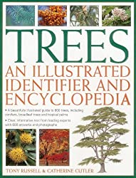 Trees: An Illustrated Identifier And Encyclopedia: A Beautifully Illustrated Guide To 600 Trees, Including Conifers, Broadleaf Trees And Tropical Palms by Tony Russell (2014-06-07)