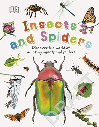 Insects and Spiders: Explore Nature with Fun Facts and Activities (Nature Explorers)