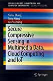 Secure Compressive Sensing in Multimedia Data, Cloud Computing and IoT (SpringerBriefs in Electrical and Computer Engineering)