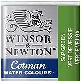 Winsor & Newton 0301696Cotman Aquarelle Couleur, Viridian, Saftgrün, 1,9x1,6x1,1 cm