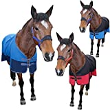 "6.3"" Blue & Black Two Tone Soft Horse Fleece Cooler Show Travel Stable Rug AND Tigerbox® Antibacterial Pen!"
