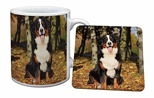 Advanta - Mug Coaster Set Berner Sennenhund Becher und Untersetzer Tier Geschenk Mug Coaster Set
