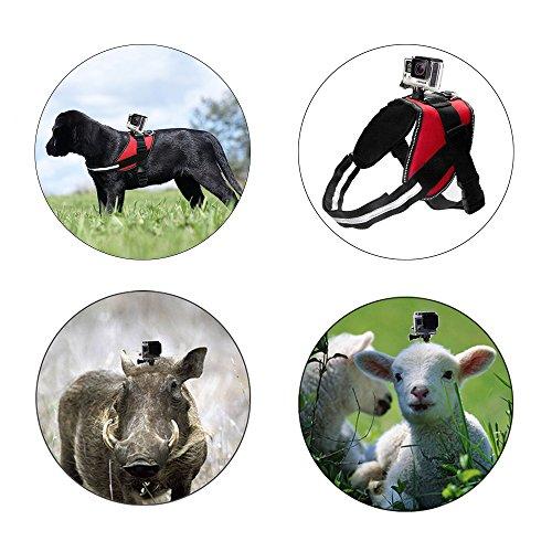 Greleaves Universal Dog Pet Harness Mount mit verstellbaren Fetch Brustgurt und anderen Gopro Zubehör für GoPro Hero 5/4/3+/3/XIAOYI / SJ und andere Sport-Kameras - 6