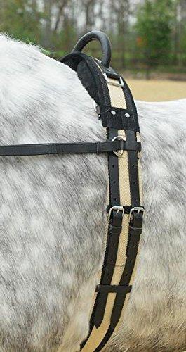 Swiss Horse Longiergurt mit einem Handgriff schwarz/beige Pony