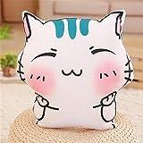 Berrose-schön Ausdruck Katze Kissen Waschbar Sofa Schlafzimmer Polster Mädchen Geschenke senden Kinder