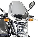 Cúpula Moto Kawasaki ER-6n 05-08 Givi teñida plata