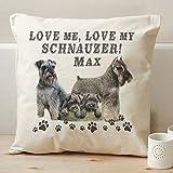 Personalizado Schnauzer amor mi perro Vintage cojín personalizado dispersión funda de almohada regalo–40cm x 40cm–con Insert/Pad * * añadir perros nombre * *