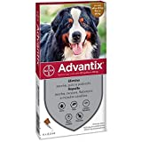 Advantix Spot on Chien Antiparasitaire Chien 4 Tubes 6,0 ML, Multicolore, Unique