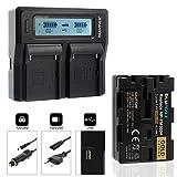 Blumax Gold Edition NP-FM500H 2040mAh + Doppelladegerät NP-FM500H Dual Charger   Passend zu Diversen Sony Kameramodellen    2 Akkus gleichzeitig Laden