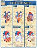 Heart: Reference Guide (Quick Study Academic)