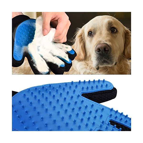 OMorc Pet Grooming Glove, Gentle Deshedding Brush Glove - 2 Right Hand  Efficient Pet Hair Remover Mitt - Massage Tool with Enhanced Five Finger Design Perfect for Dogs & Cats with Long & Short Fur 2