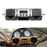 Motorrad-Lautsprecher Bluetooth Audio Radiomp3 Sound System Fm Stereo-Gold/Splitter Wasserdicht