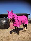 Equipride Combo Fly Rug/Sheet with Fly Mask Hot Pink (5'9
