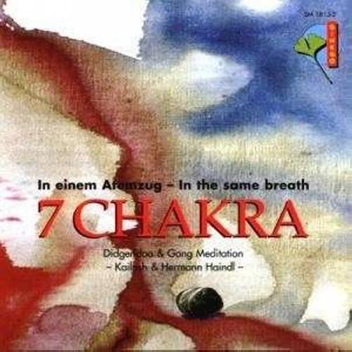 7 Chakra: In Einem Atemzug;In The Same Breath;Didgeridoo & Gong Medita by Various Artists