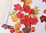 Luxbon 100 Stück künstliche Herbst Ahornblätter Wandbild Türschild Hochzeit Party Deko verschiedene Farben und Größen - 4
