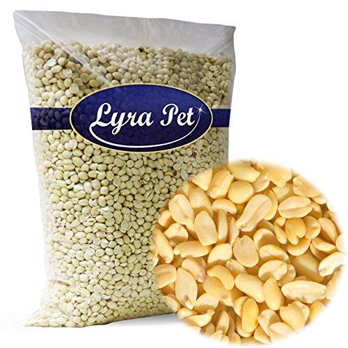 Lyra Pet 25 kg Erdnusskerne Splits weiss blanchiert Erdnüsse Wildvogelfutter
