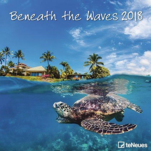 2018 Beneath the Waves Calendar - teNeues Grid Calendar - Photography Calendar - 30 x 30 cm