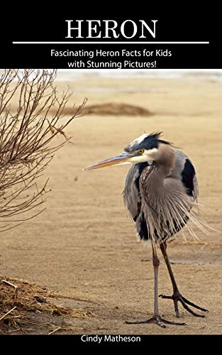 Heron: Fascinating Heron Facts for Kids with Stunning Pictures! Descargar Epub Ahora