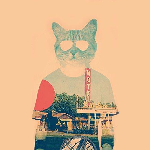 Apple iPhone SE Case Skin Sticker aus Vinyl-Folie Aufkleber Katze The Cat Ip Haustier DesignSkins® glänzend