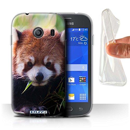 Stuff4® Gel TPU Hülle/Hülle für Samsung Galaxy Ace Style/Waschbär Muster/Wilde Tiere Kollektion