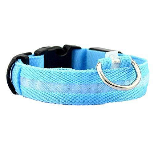 Makalon Normallack-erstklassiger Nylon-Sicherheitshaustier-Kragen für Beleuchtete Feste Hundehalsband-Glühen-Halskette des Nylon Schnalle verstellbares reflektierendes Hundehalsband(M, Blau) -
