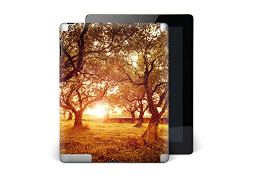 apple-ipad-3-autocollant-sticker-vinyle-skin-arriere-tablette-tactile-housse-de-protection-personnal