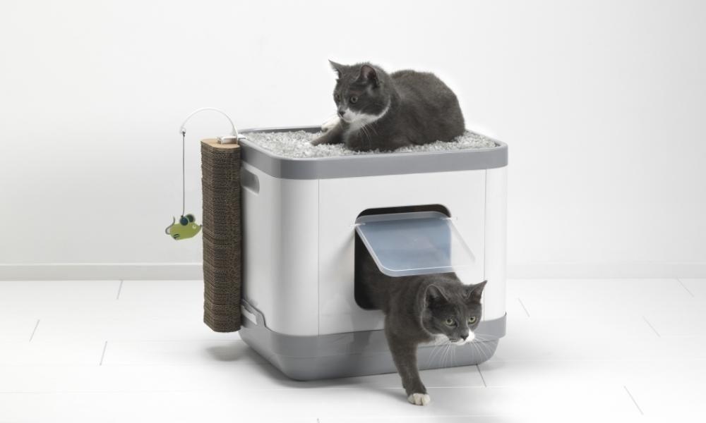 Clean n tidy lettiera cubica tutto in uno per gatti tutto per gli