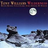 Songtexte von Tony Williams - Wilderness