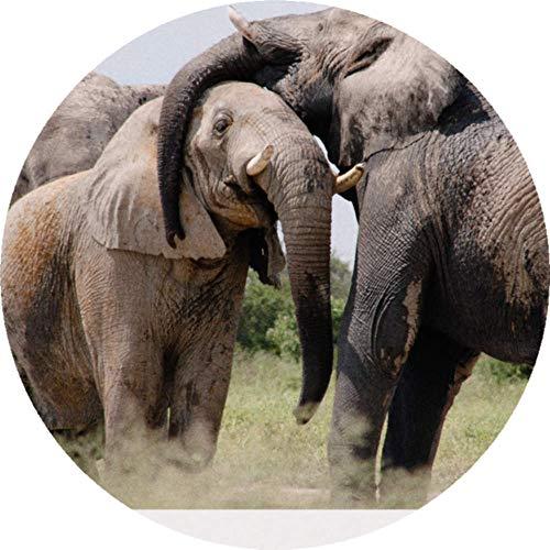Azeeda 24 x 40mm Redondas 'Elefantes' Pegatinas (SK00002338)