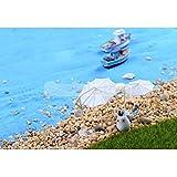 Sellify 5 set Micro Landscape Plastic Miniature Umbrella Garden Decor Ornament DIY S