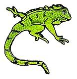 Grün Chameleon Animal Cartoon bestickt Nähen Eisen auf Patch Cartoon Nähen Eisen auf bestickte Applikation Craft handgefertigt Baby Kid Girl Frauen Tücher DIY Kostüm Zubehör