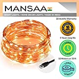 Mansaa Essentials 100 LED Copper Fairy String 10 m Lights with 1 m USB Cable for Home Decoration, Party , Warm White
