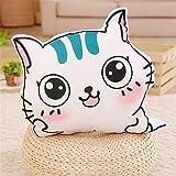 NEEDRA niedliches Katzenkissen kann verwendet Werden, um die Kissen für Mädchen zu entfernen und zu waschen